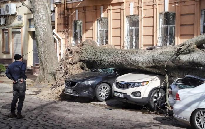 Возмещение убытков после урагана: одесситка выиграла суд у исполнительного комитета горсовета