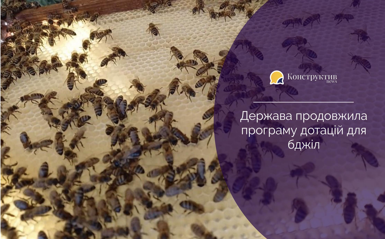 Держава продовжила програму дотацій для бджіл