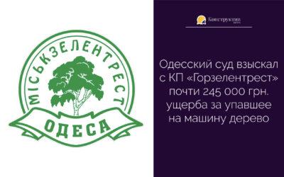 Одесский суд взыскал с КП «Горзелентрест» почти 245 000 грн. ущерба за упавшее на машину дерево
