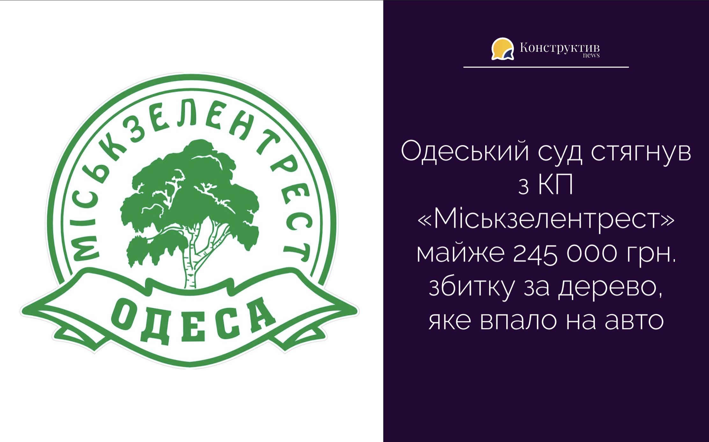 Одеський суд стягнув з КП «Міськзелентрест» майже 245 000 грн. збитку за дерево, яке впало на авто